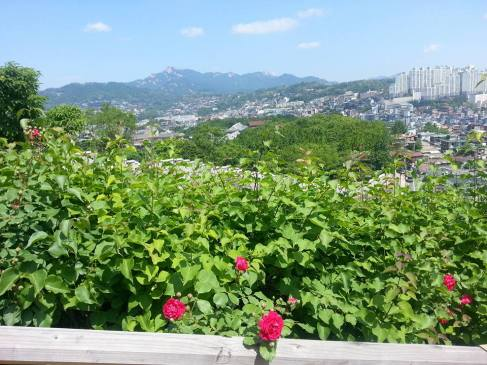 Beautiful gardens surround Seoul City Wall